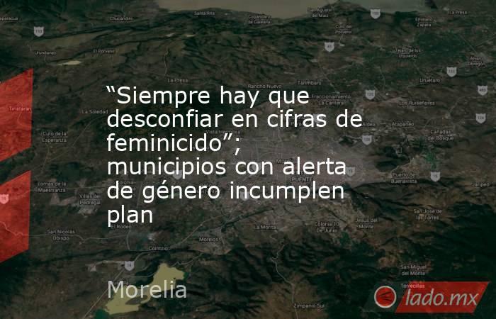"""""""Siempre hay que desconfiar en cifras de feminicido""""; municipios con alerta de género incumplen plan. Noticias en tiempo real"""