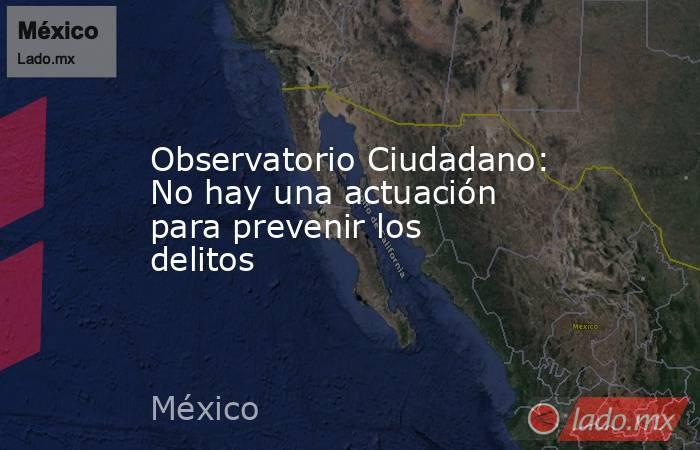 Observatorio Ciudadano: No hay una actuación para prevenir los delitos. Noticias en tiempo real