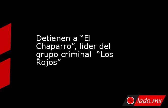 """Detienen a """"El Chaparro"""", líder del grupo criminal  """"Los Rojos"""". Noticias en tiempo real"""