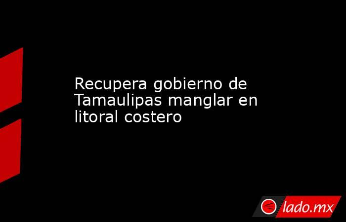 Recupera gobierno de Tamaulipas manglar en litoral costero. Noticias en tiempo real