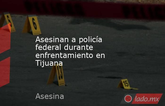 Asesinan a policía federal durante enfrentamiento en Tijuana. Noticias en tiempo real