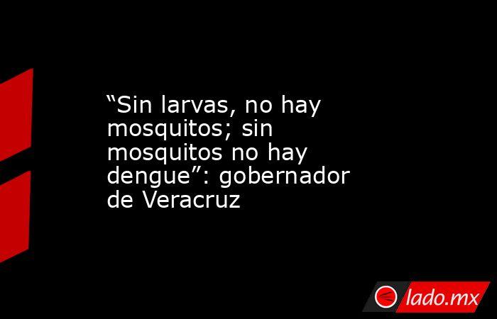 """""""Sin larvas, no hay mosquitos; sin mosquitos no hay dengue"""": gobernador de Veracruz. Noticias en tiempo real"""