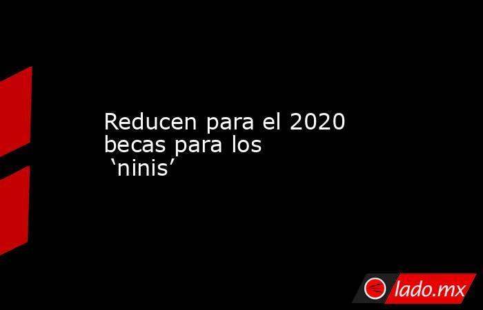 Reducen para el 2020 becas para los 'ninis'. Noticias en tiempo real