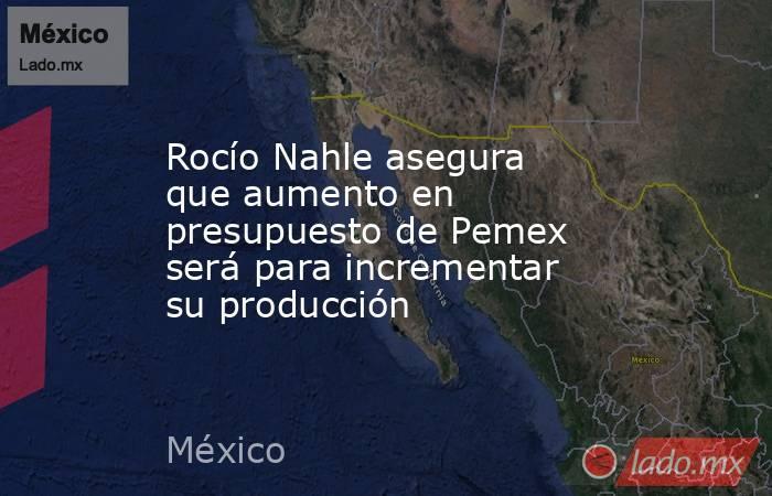 Rocío Nahle asegura que aumento en presupuesto de Pemex será para incrementar su producción. Noticias en tiempo real