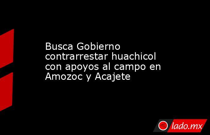 Busca Gobierno contrarrestar huachicol con apoyos al campo en Amozoc y Acajete. Noticias en tiempo real