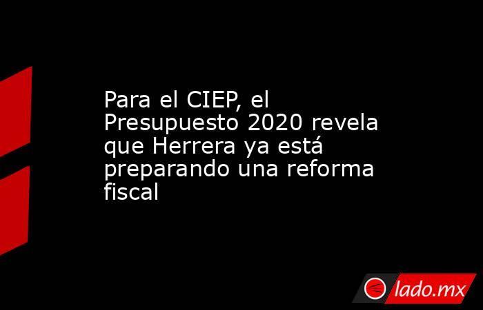 Para el CIEP, el Presupuesto 2020 revela que Herrera ya está preparando una reforma fiscal. Noticias en tiempo real