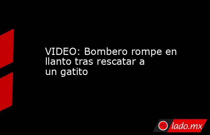 VIDEO: Bombero rompe en llanto tras rescatar a un gatito. Noticias en tiempo real