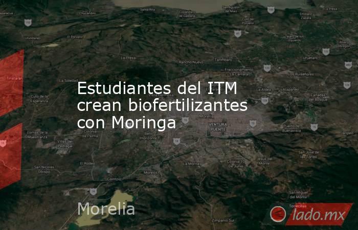 Estudiantes del ITM crean biofertilizantes con Moringa. Noticias en tiempo real