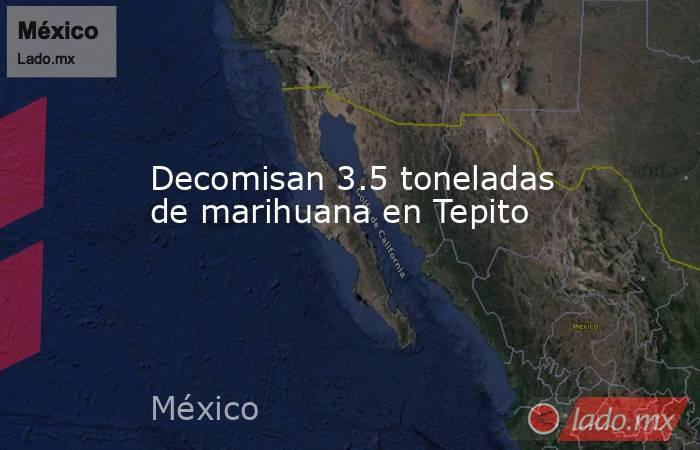 Decomisan 3.5 toneladas de marihuana en Tepito. Noticias en tiempo real