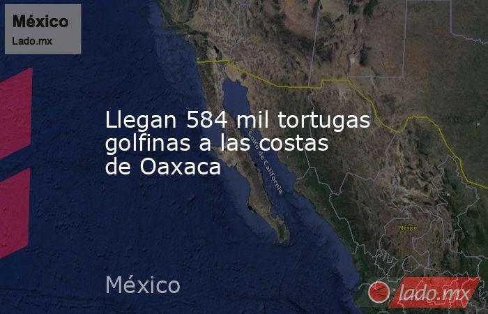 Llegan 584 mil tortugas golfinas a las costas de Oaxaca. Noticias en tiempo real