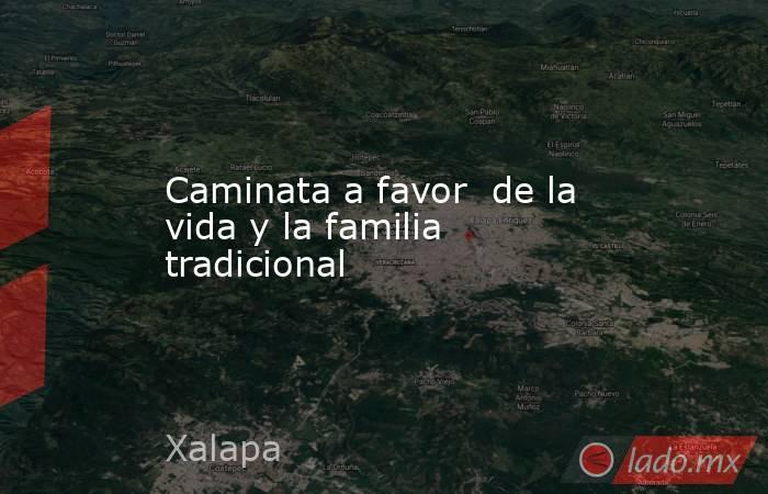 Caminata a favor  de la vida y la familia tradicional. Noticias en tiempo real