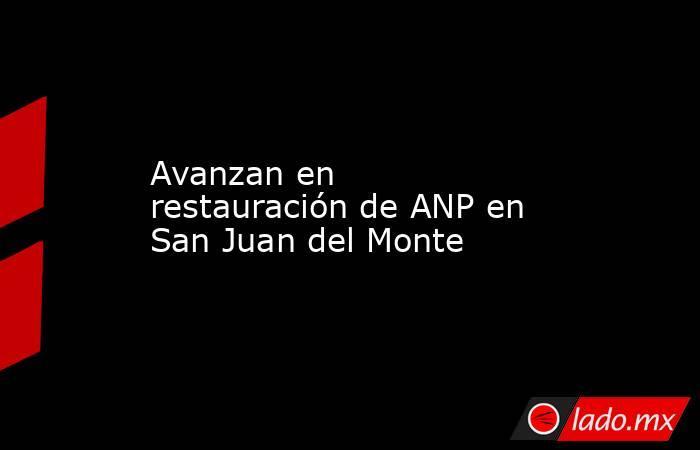 Avanzan en restauración de ANP en San Juan del Monte. Noticias en tiempo real