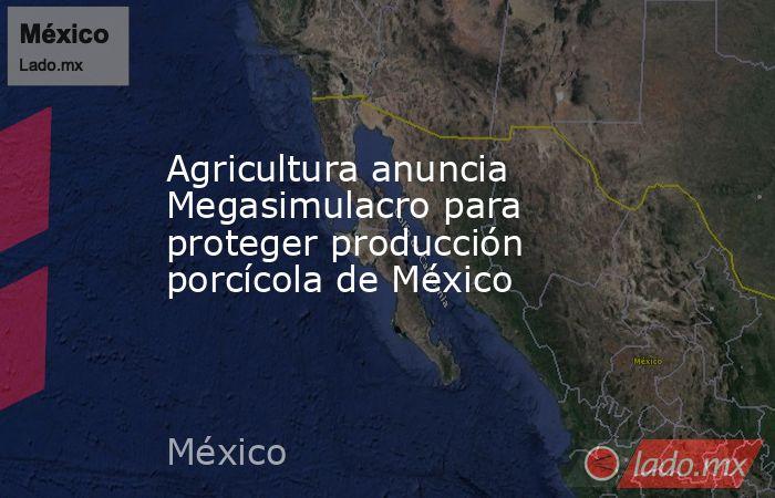 Agricultura anuncia Megasimulacro para proteger producción porcícola de México. Noticias en tiempo real