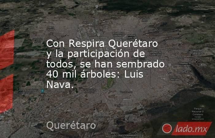 Con Respira Querétaro y la participación de todos, se han sembrado 40 mil árboles: Luis Nava.. Noticias en tiempo real