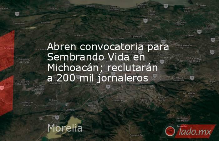 Abren convocatoria para Sembrando Vida en Michoacán; reclutarán a 200 mil jornaleros. Noticias en tiempo real