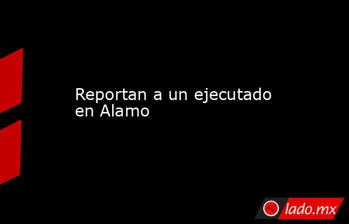 Reportan a un ejecutado en Alamo. Noticias en tiempo real