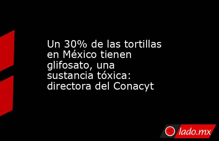 Un 30% de las tortillas en México tienen glifosato, una sustancia tóxica: directora del Conacyt. Noticias en tiempo real