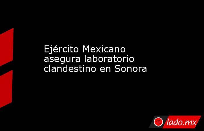 Ejército Mexicano asegura laboratorio clandestino en Sonora. Noticias en tiempo real