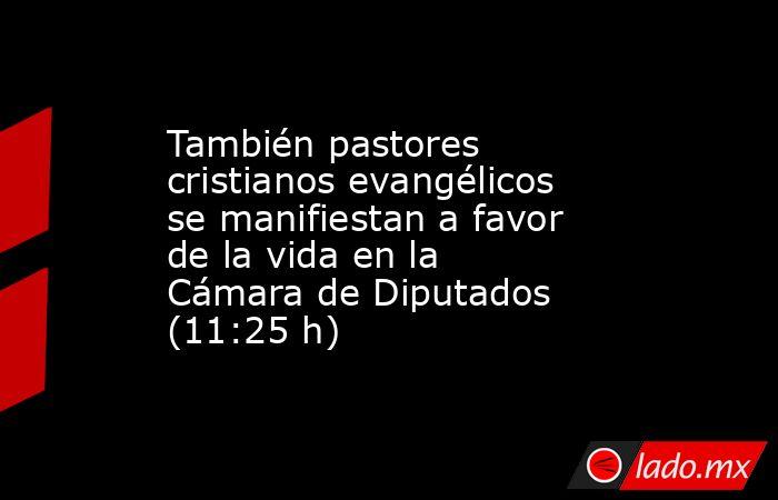 También pastores cristianos evangélicos se manifiestan a favor de la vida en la Cámara de Diputados (11:25 h). Noticias en tiempo real