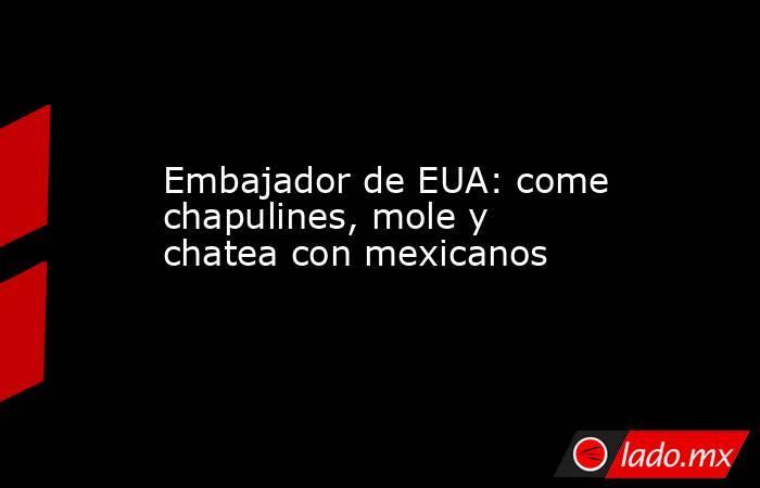 Embajador de EUA: come chapulines, mole y chatea con mexicanos. Noticias en tiempo real