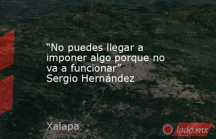 """""""No puedes llegar a imponer algo porque no va a funcionar"""" Sergio Hernández. Noticias en tiempo real"""
