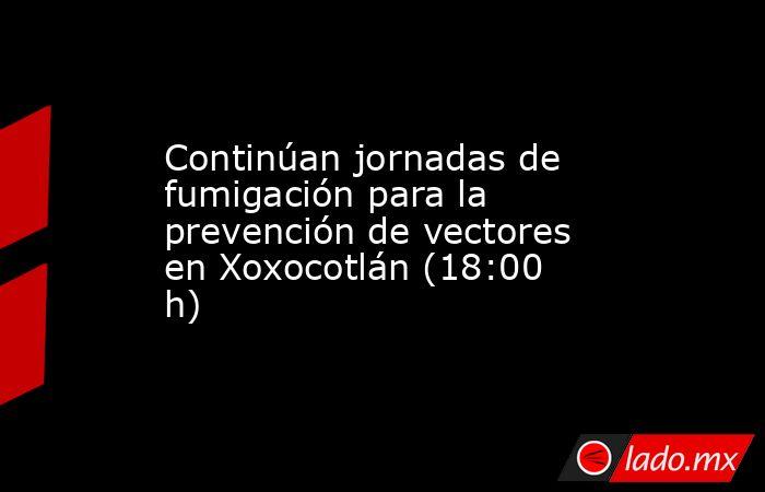 Continúan jornadas de fumigación para la prevención de vectores en Xoxocotlán (18:00 h). Noticias en tiempo real