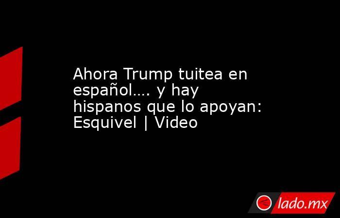 Ahora Trump tuitea en español…. y hay hispanos que lo apoyan: Esquivel | Video. Noticias en tiempo real