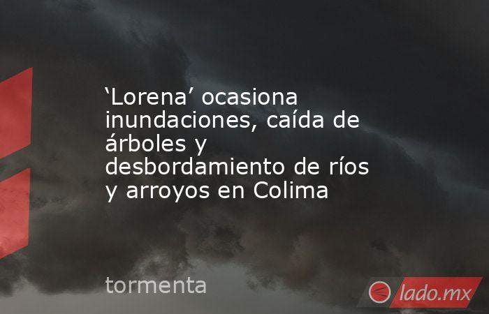 'Lorena' ocasiona inundaciones, caída de árboles y desbordamiento de ríos y arroyos en Colima. Noticias en tiempo real