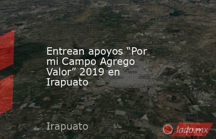 """Entrean apoyos """"Por mi Campo Agrego Valor"""" 2019 en Irapuato. Noticias en tiempo real"""