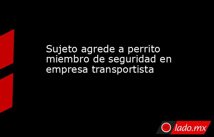 Sujeto agrede a perrito miembro de seguridad en empresa transportista . Noticias en tiempo real
