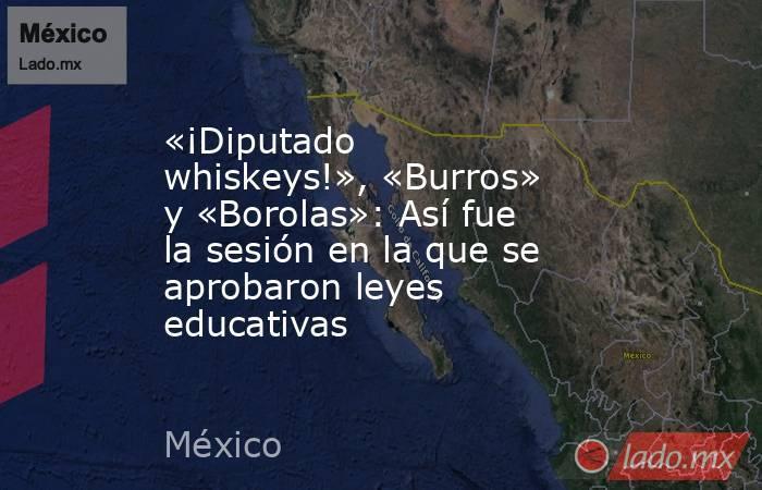 «¡Diputado whiskeys!», «Burros» y «Borolas»: Así fue la sesión en la que se aprobaron leyes educativas. Noticias en tiempo real