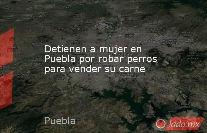 Detienen a mujer en Puebla por robar perros para vender su carne. Noticias en tiempo real