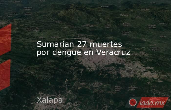 Sumarían 27 muertes por dengue en Veracruz. Noticias en tiempo real