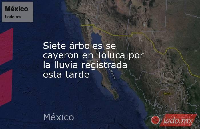 Siete árboles se cayeron en Toluca por la lluvia registrada esta tarde. Noticias en tiempo real