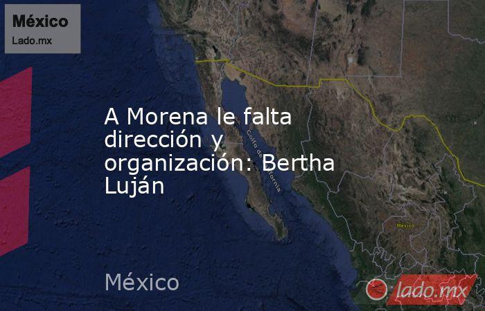 A Morena le falta dirección y organización: Bertha Luján. Noticias en tiempo real