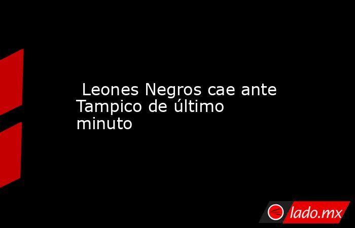 Leones Negros cae ante Tampico de último minuto. Noticias en tiempo real