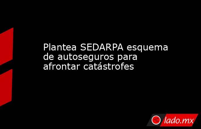 Plantea SEDARPA esquema de autoseguros para afrontar catástrofes. Noticias en tiempo real