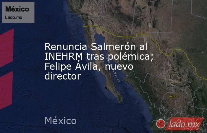 Renuncia Salmerón al INEHRM tras polémica; Felipe Ávila, nuevo director. Noticias en tiempo real