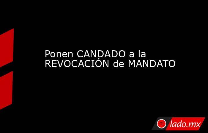 Ponen CANDADO a la REVOCACIÓN de MANDATO. Noticias en tiempo real