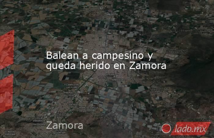 Balean a campesino y queda herido en Zamora. Noticias en tiempo real