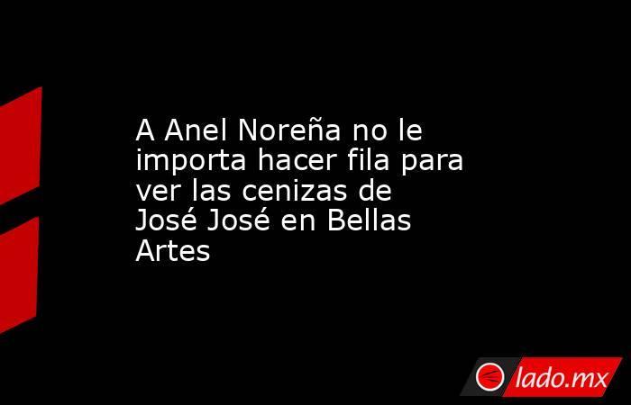 A Anel Noreña no le importa hacer fila para ver las cenizas de José José en Bellas Artes. Noticias en tiempo real