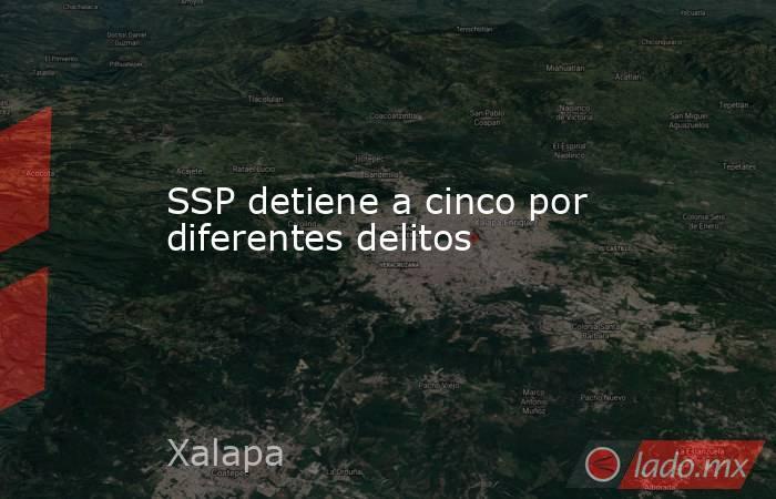 SSP detiene a cinco por diferentes delitos. Noticias en tiempo real