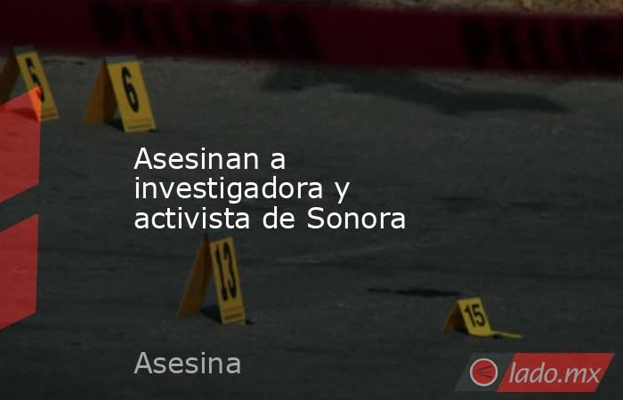 Asesinan a investigadora y activista de Sonora. Noticias en tiempo real