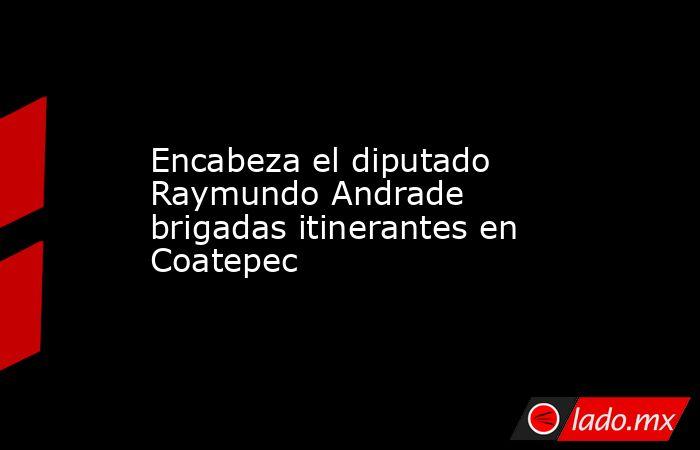 Encabeza el diputado Raymundo Andrade brigadas itinerantes en Coatepec. Noticias en tiempo real