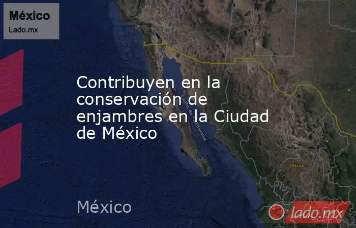 Contribuyen en la conservación de enjambres en la Ciudad de México. Noticias en tiempo real