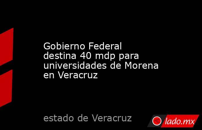 Gobierno Federal destina 40 mdp para universidades de Morena en Veracruz. Noticias en tiempo real