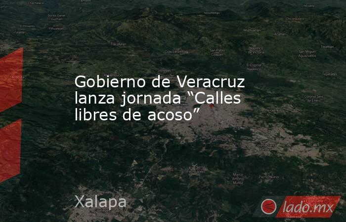 """Gobierno de Veracruz lanza jornada """"Calles libres de acoso"""". Noticias en tiempo real"""