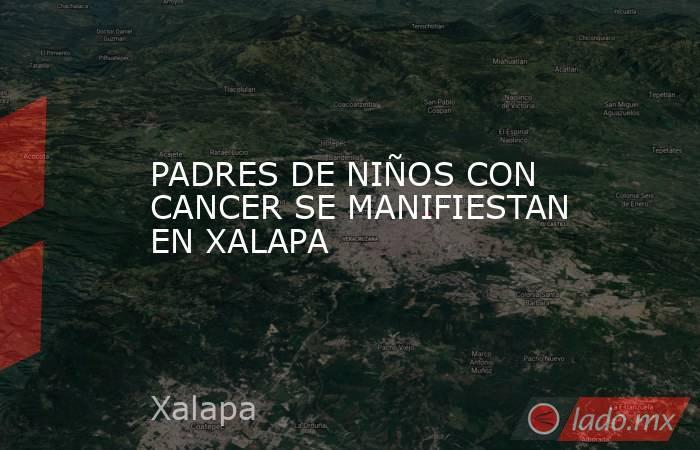 PADRES DE NIÑOS CON CANCER SE MANIFIESTAN EN XALAPA. Noticias en tiempo real