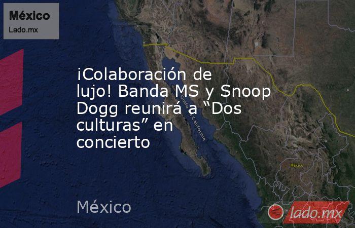 """¡Colaboración de lujo! Banda MS y Snoop Dogg reunirá a """"Dos culturas"""" en concierto. Noticias en tiempo real"""