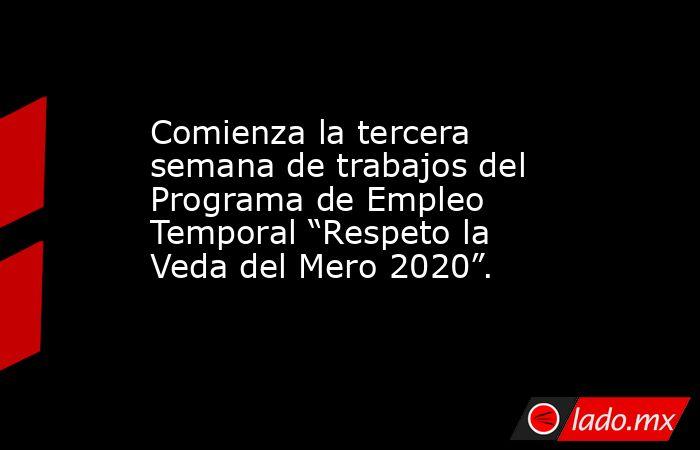 """Comienza la tercera semana de trabajos del Programa de Empleo Temporal """"Respeto la Veda del Mero 2020"""".. Noticias en tiempo real"""